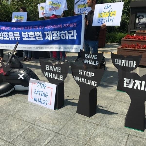 해양포유류 보호법 기자회견 [사진그림류]