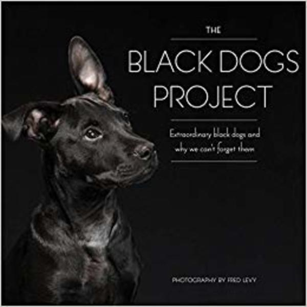 (The) Black Dogs Project : Extraordinary Black Dogs and Why We Can´t Forget Them [동물도서]