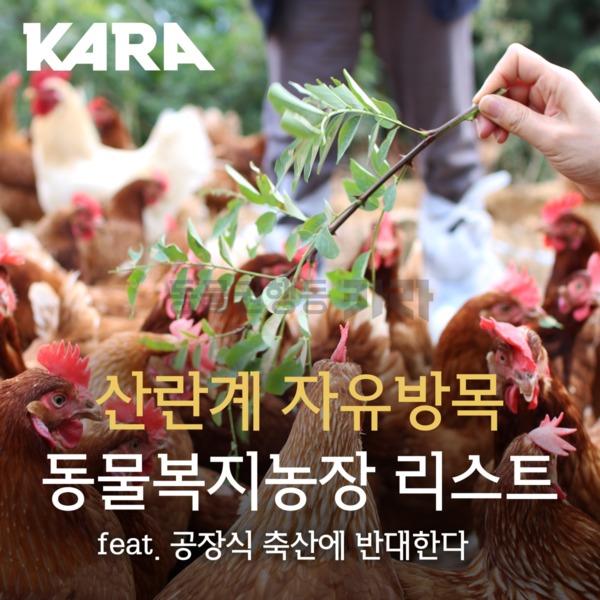 [카드뉴스] 산란계 자유방사 동물복지농장 [사진그림류]
