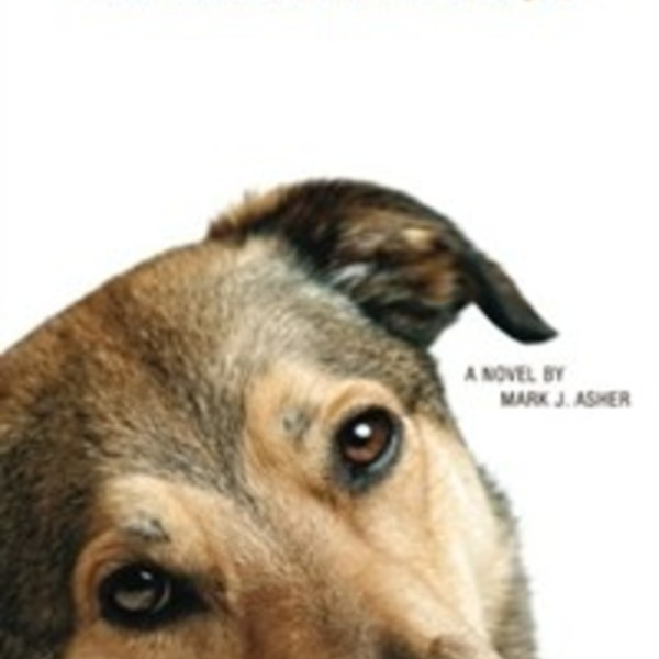 All That Ails You : The Adventures of a Canine Caregiver [동물도서]
