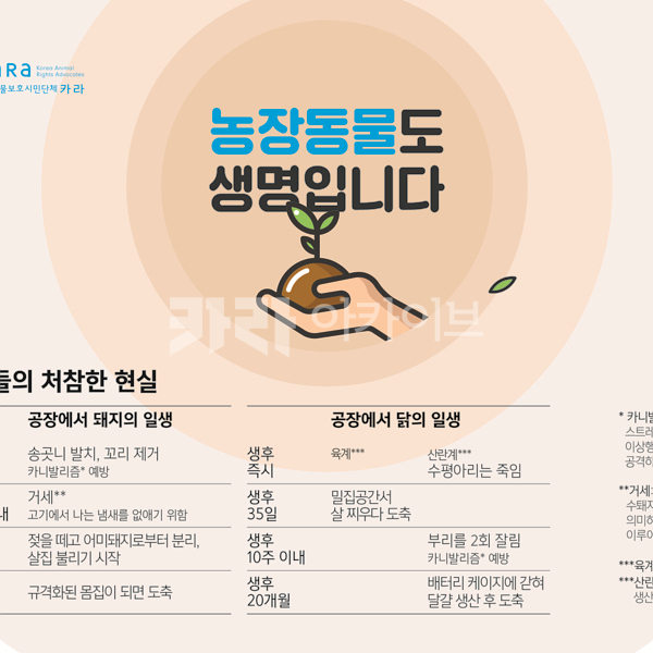 서울동물복지지원센터 부스 디자인 [사진그림류]