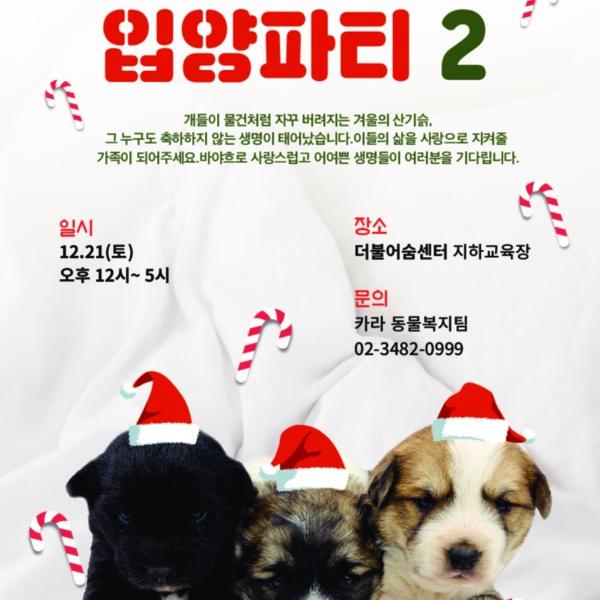 입양행사 러블리보스2 홍보물 [사진그림류]