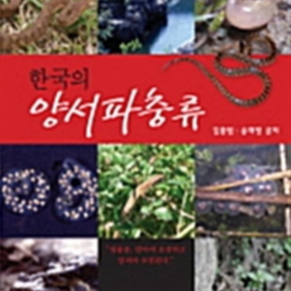(한국의)양서파충류 [동물도서]