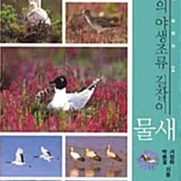 (한국의 야생조류 길잡이)물새 [동물도서]