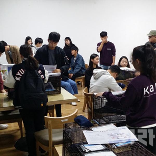 경희대학교 길고양이 동아리 TNR 포획 지원 [사진그림류]
