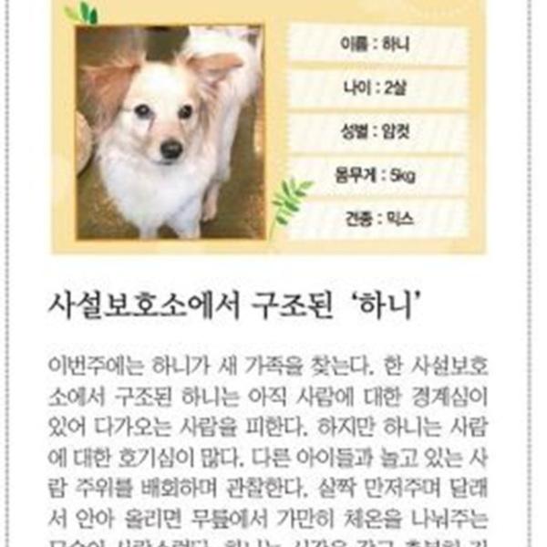 (기사) 파이넨셜뉴스동반자를찾습니다(하니) [문서류]