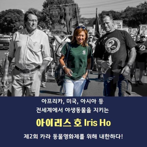 [카드뉴스]아이리스호 내한 [사진그림류]
