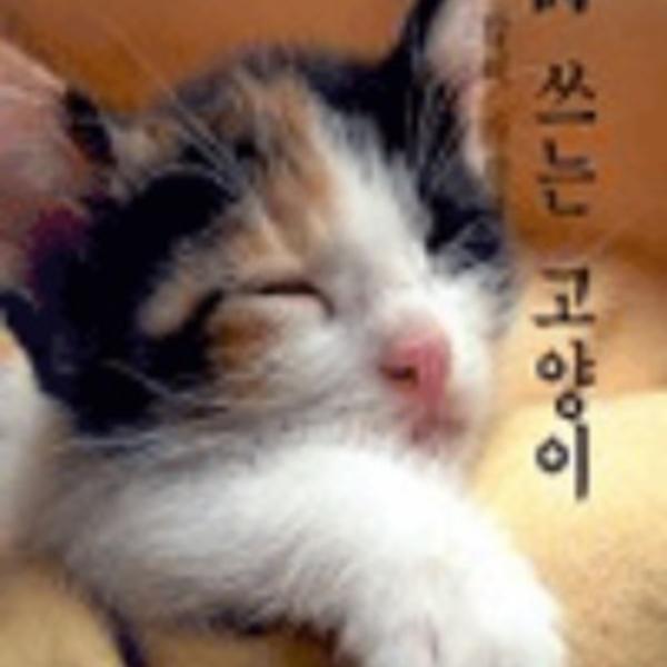 詩 쓰는 고양이.2 : 널 많이 사랑해 [동물도서]