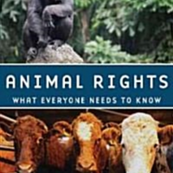 Animal Rights : What Everyone Needs to Know [동물도서]