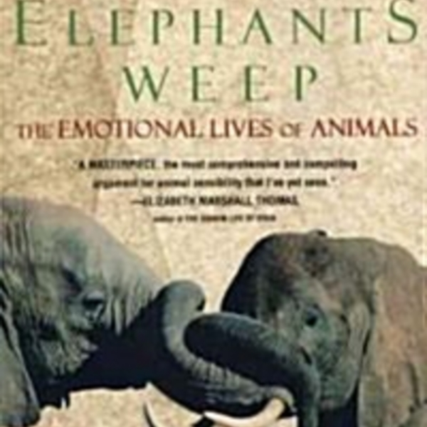 When Elephants Weep : The Emotional Lives of Animals [동물도서]