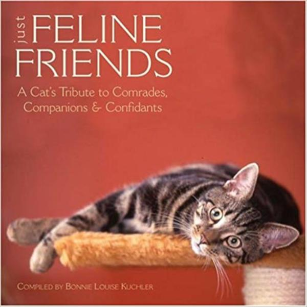 Just Feline Friends : A Cat´s Tribute To Comrades, Companions & Confidants [동물도서]