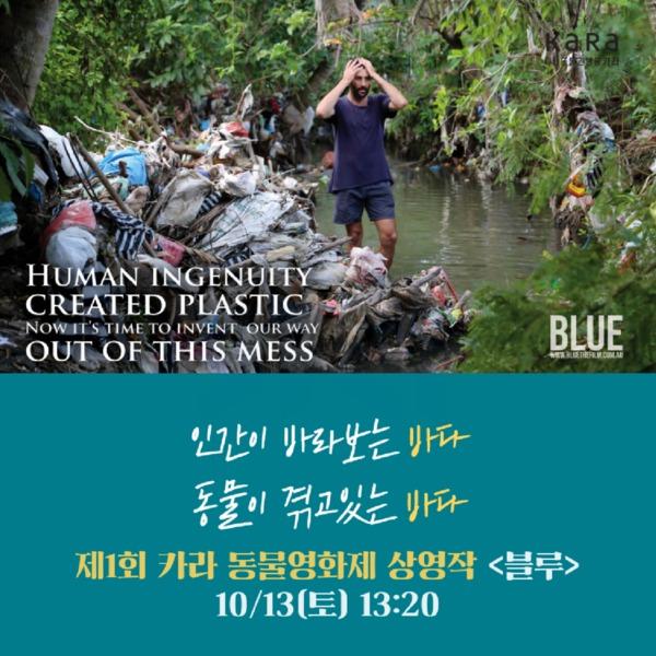 (카드뉴스) 제1회 카라 동물영화제(블루) [문서류]