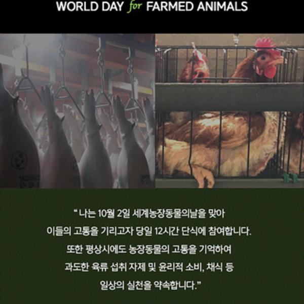 (웹이미지) 농장동물의 날 [사진그림류]