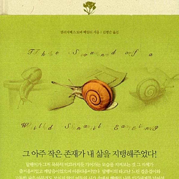 달팽이 안단테 [동물도서]