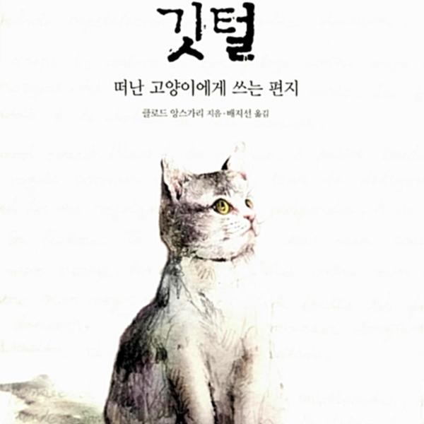 깃털 : 떠난 고양이에게 쓰는 편지 [동물도서]