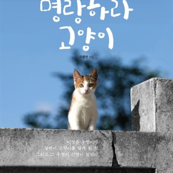 명랑하라 고양이 [동물도서]