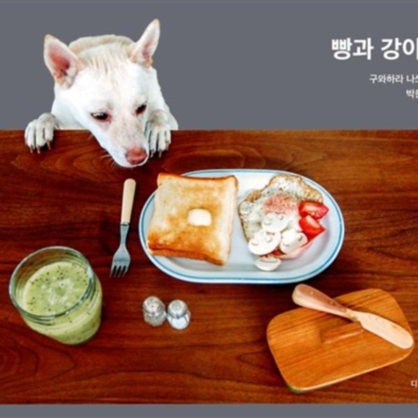 빵과 강아지 [동물도서]