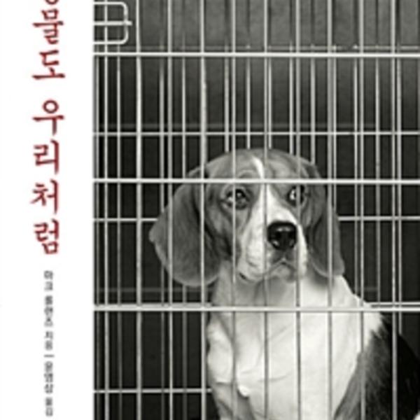 동물도 우리처럼 : 학대받는 모든 동물을 위한 성찰 [동물도서]