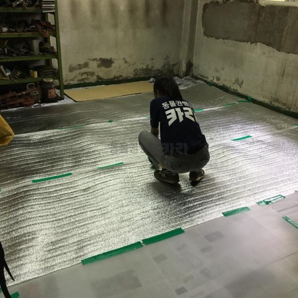 김포 시골개 중성화 공장 청소 [사진그림류]