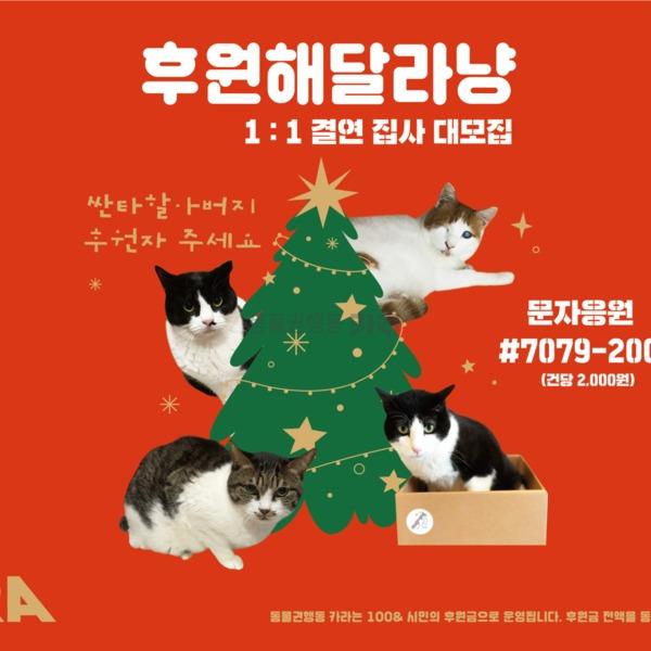제12회 궁디팡팡 캣페스타 현수막 [사진그림류]