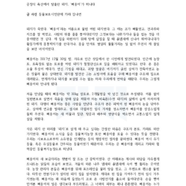 (원고) 애니멀피플 삐용이 [문서류]