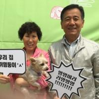 2016 입양가족의 날 Thanks family day 행사 포토존 [사진그림류]