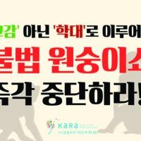 교감' 아닌 '학대'로 이루어진 불법 원숭이쇼 즉각 중단하라!! : 원숭이쇼 반대 피켓 [사진그림류]