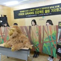 테마동물원 쥬쥬의 쇼 오랑우탄 '오랑이'가 우랑우탄으로 살아갈 권리를! : 프리오랑 프로젝트 출범 기자회견 사진 [사진그림류]