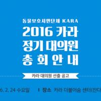 카라 대의원 선출 공고 안내 포스터 [사진그림류]