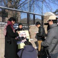 구제역 살처분 관련 릴레이 1인 시위 현장 [사진그림류]