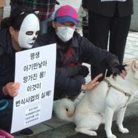 부산 기장군의 반려동물번식센터 건립 중단 기자회견 현장 [사진그림류]