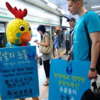 초복 복날캠페인 '복날의 눈물' : 지하철게릴라 현장 [사진그림류]