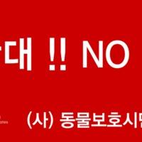 펜디 모피쇼 반대시위 현수막 이미지 [사진그림류]