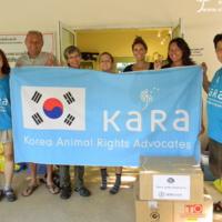 태국 홍수 피해 동물 구호 및 지원 봉사활동 현장 [사진그림류]