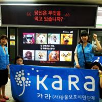 2013 카라 복날캠페인 : 지하철 광고 : 당신은 무엇을 먹고 있습니까? : 동대문역사문화공원역 기념사진 [사진그림류]