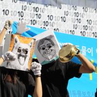 2012 한국실험예술제 퍼레이드 : 해피 카라 패밀리 현장 [사진그림류]