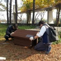 월드컵공원 길고양이 공원급식소 설치 현장 [사진그림류]