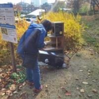 어린이대공원 길고양이 1차 TNR 작업3 : 방사 현장 [사진그림류]