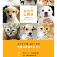 슈퍼강아지,슈퍼아깽이 입양프로젝트 시즌3 : 슈강프슈아프 [사진그림류]