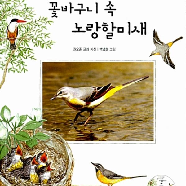 꽃바구니 속 노랑할미새 [동물도서]