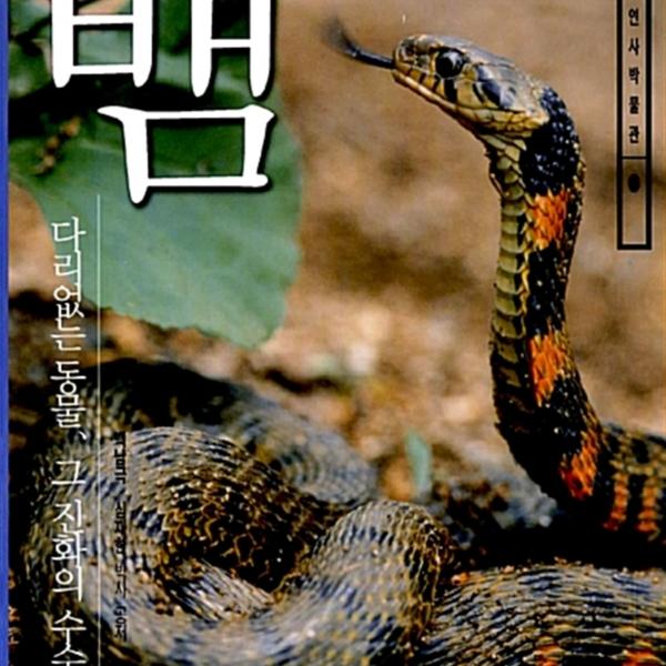 뱀 : 다리없는 동물, 그 진화의 수수께끼 [동물도서]
