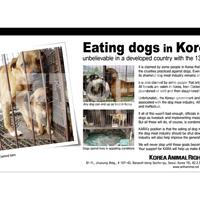 Eating dogs in Korea : 2008 개식용 반대 광고 [사진그림류]