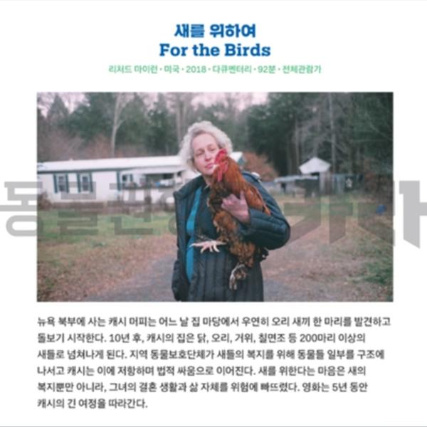 [카드뉴스]새를 위하여 홍보 [사진그림류]