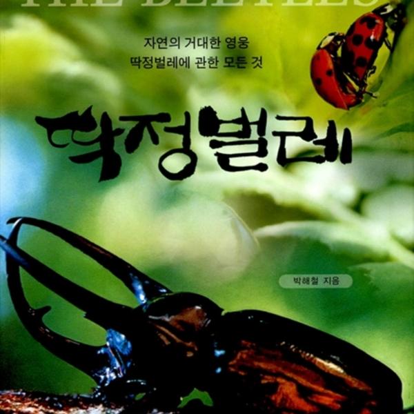 딱정벌레 : 자연의 거대한 영웅 딱정벌레에 관한 모든 것 [동물도서]