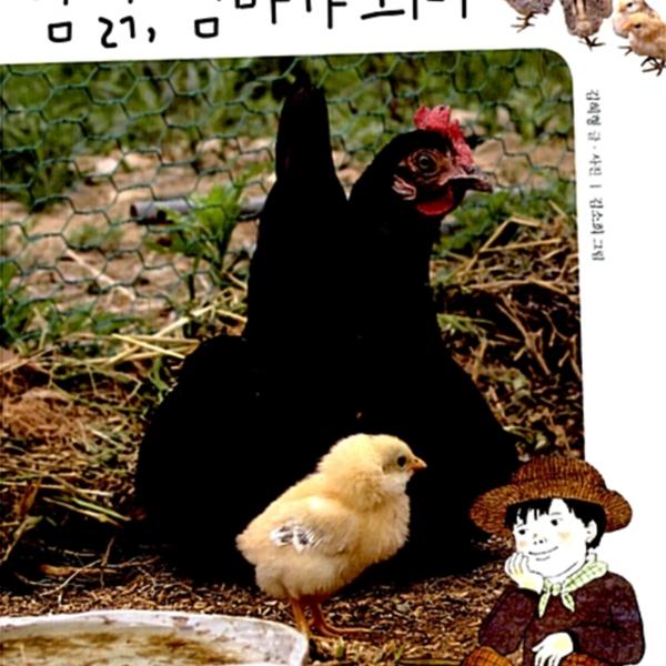 암탉, 엄마가 되다 : 개성 강한 닭들의 좌충우돌 생태 다큐멘터리 [동물도서]
