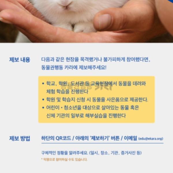 [웹자보]no동물체험no해부실습 [사진그림류]