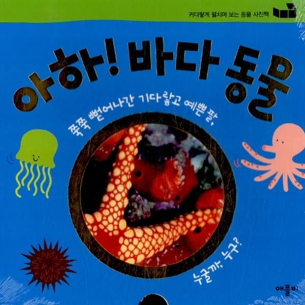 아하! 바다 동물 : 커다랗게 펼치며 보는 동물 사진책 [동물도서]