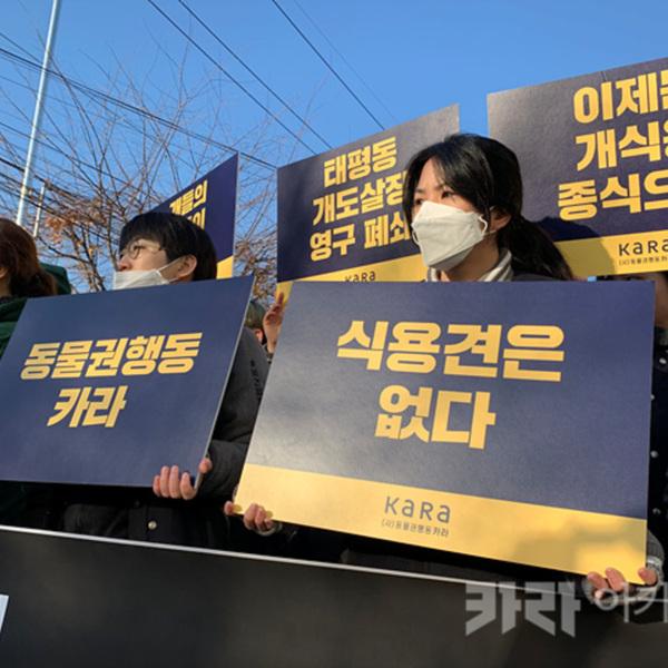 태평동 도축장 행정대집행 모니터링 및 기자회견 [사진그림류]