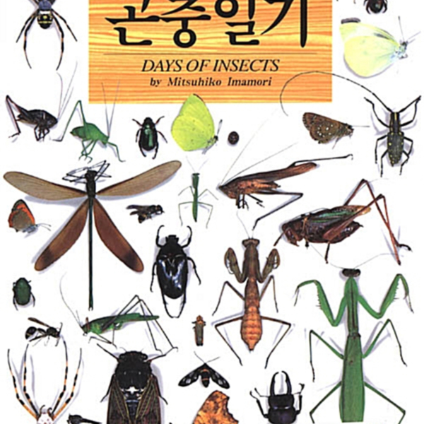 (봄·여름·가을·겨울)곤충일기 [동물도서]