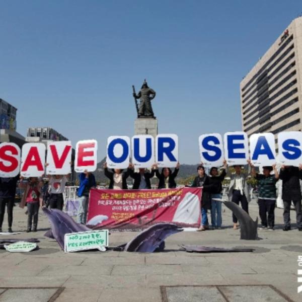 [2019.04.15] 국내 사육 벨루가 러시아 바다로 방류 요구 공동 성명
